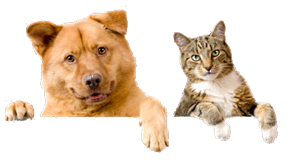 Pet Food Reviews (Australia)