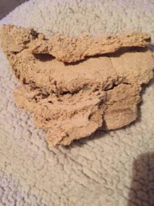 Woolworths Baxters Dog Food - Sick/Deceased Dog Reports