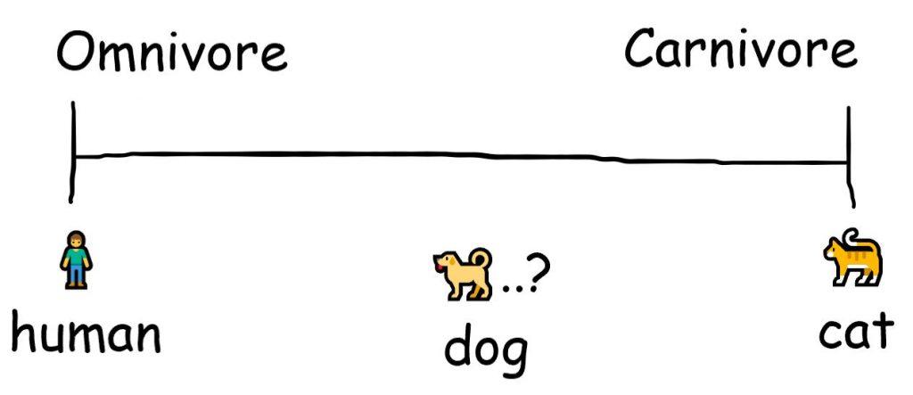 Are dogs carnivores or omnivores?
